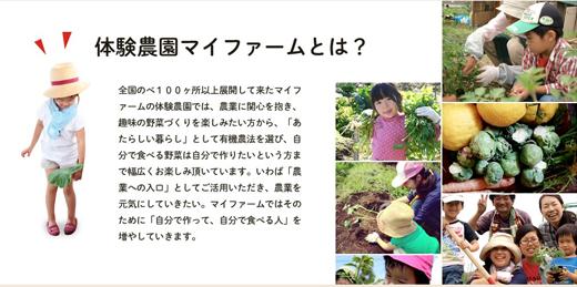 /data/blog/archive/original/36354.jpg