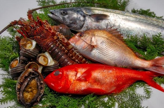 継続開催「大阪【飲食業向け】集客につなげる資金調達」個別相談会のご案内