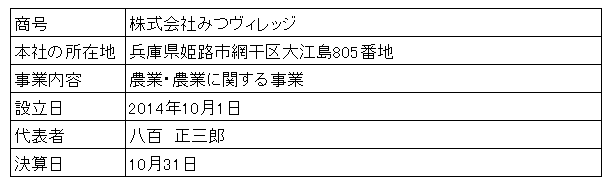 /data/fund/2865/みつヴィレッジ会社概要.png