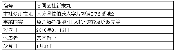 /data/fund/2880/新栄丸会社概要.png