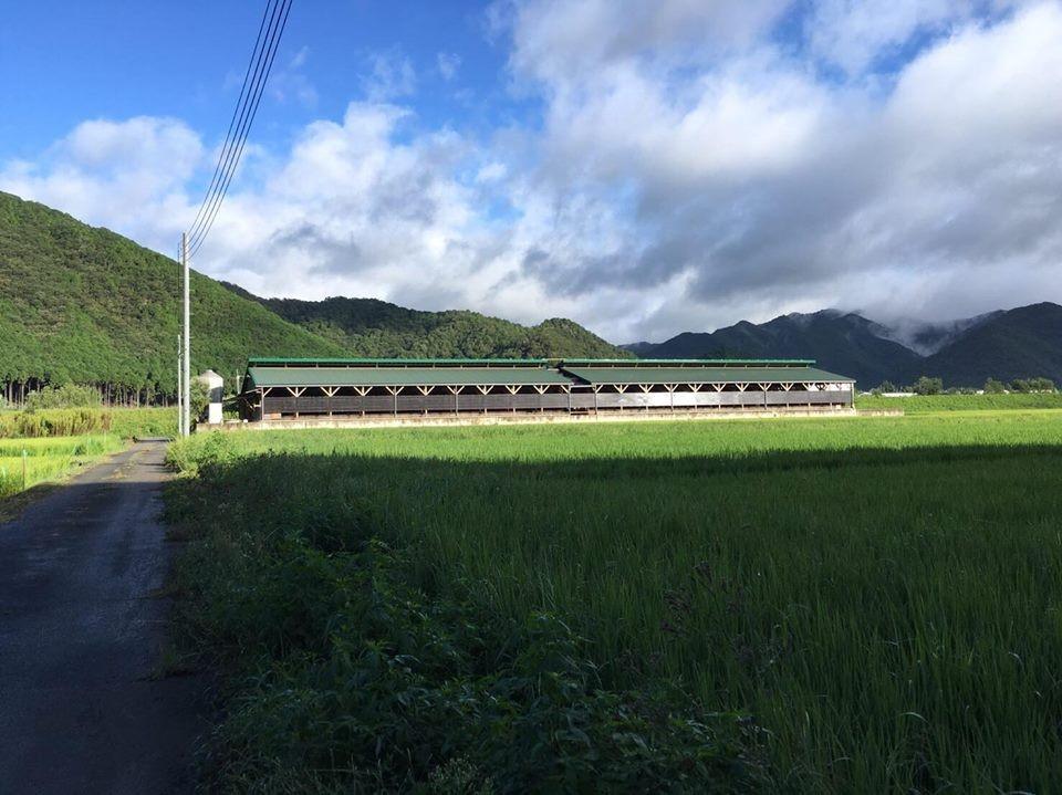 /data/fund/3008/川岸牧場⑤.jpg