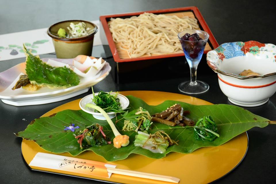 /data/fund/3644/野菜料理.jpg