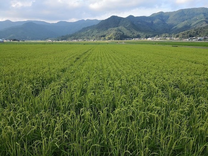 /data/fund/5026/地域農家の畑.jpg