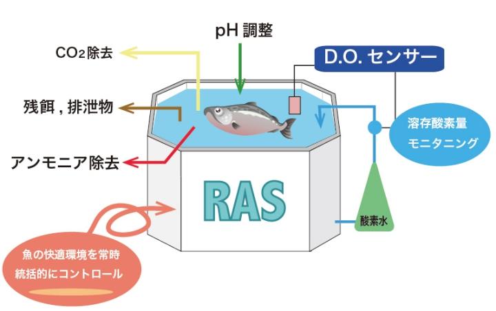 /data/fund/5027/RAS生産.jpg