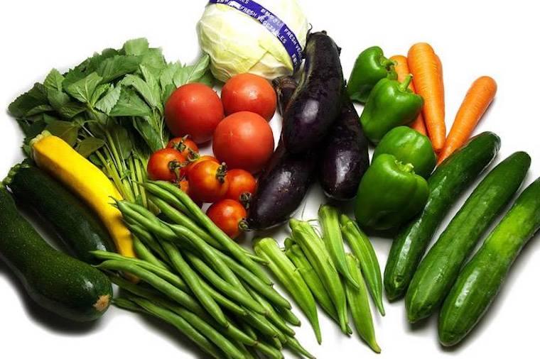 /data/fund/6990/vegetable.jpg
