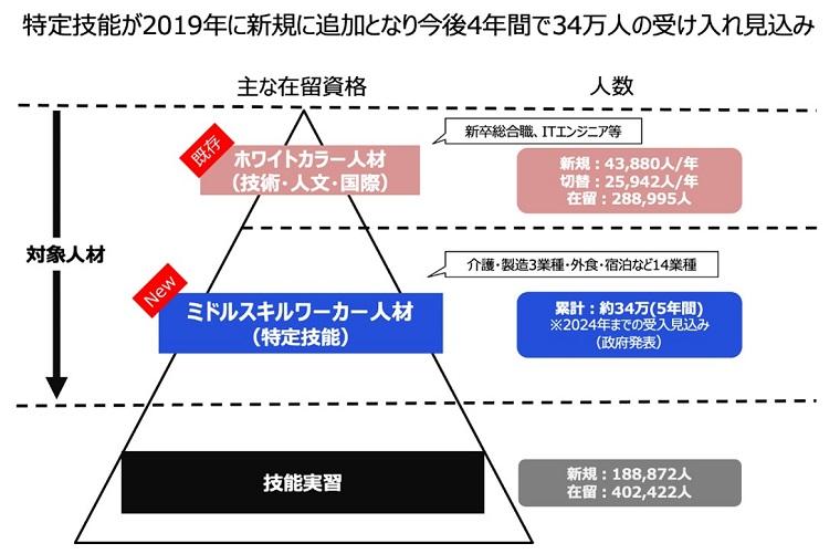 /data/fund/7224/特定技能 ピラミッド.jpg
