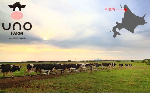 /data/project/442/宇野牧場.jpg